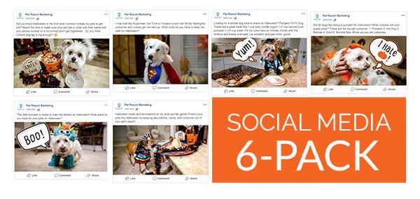 Social Media 6-Pack