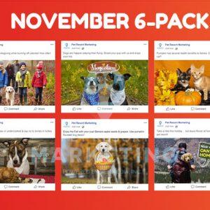 november 6 pack