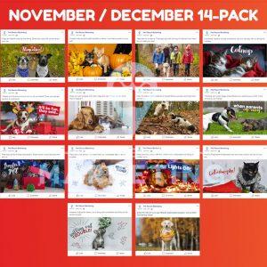 november december 6 pack