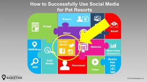 How to Successfully Use Social Media Marketing for Pet Resorts