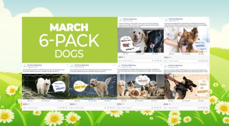 March 2019 6 Pack Dogs