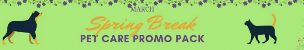 March 2019 Promo Pack Banner