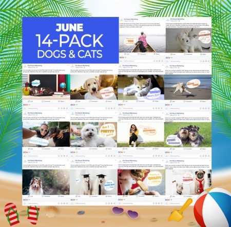 June 14 Pack Dogs and Cats