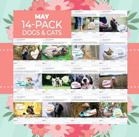 May 14 Pack Dogs & Cats