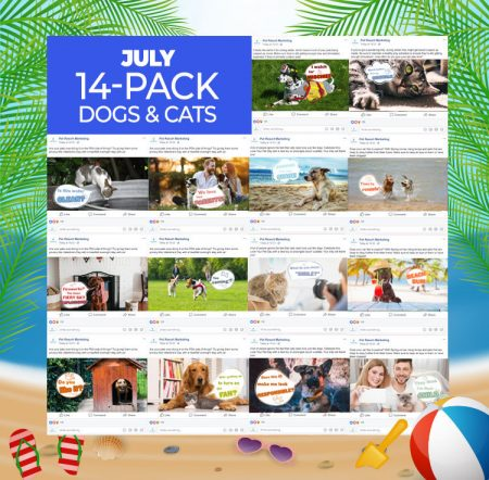 July 14 Pack dogs and cats
