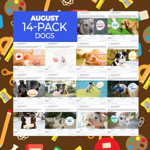 August 14 Pack Dogs
