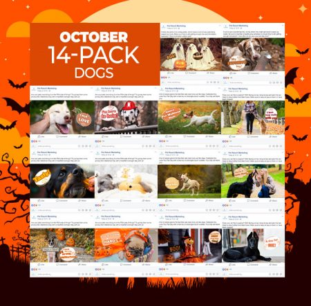 October 14 Pack Dogs
