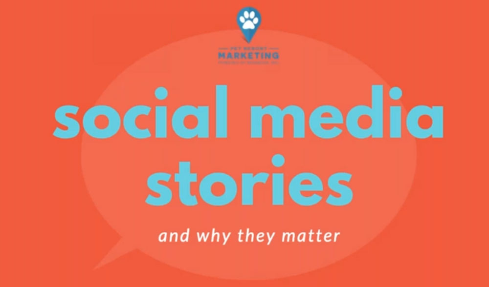 Social Media Stories (and Why They Matter)