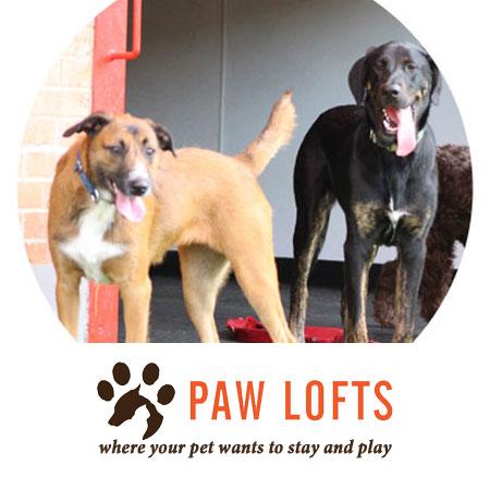 Paw Lofts