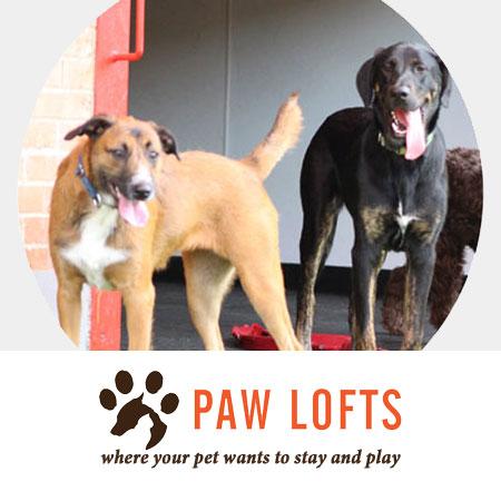 Paw Lofts Case Study