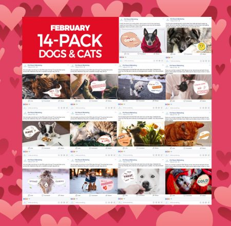 feb-2020-14-pack-dogs-cats