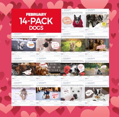 february-14-pack-dogs