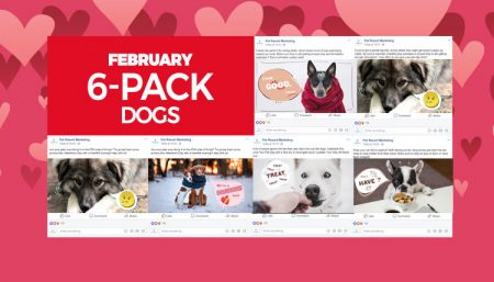 february-6-pack-dogs