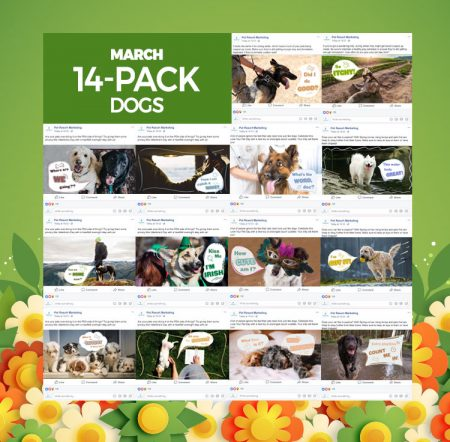 March 2020 14 Pack Dogs