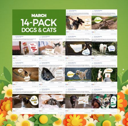 March 2020 14 Pack Dogs and Cats
