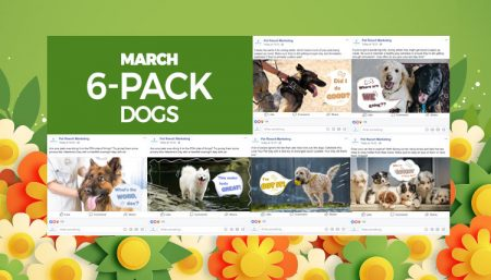 March 2020 6 Pack Dogs